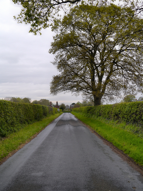 Rostherne, New Road
