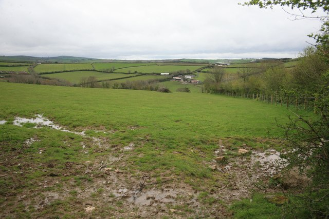 Rural view from a soggy field