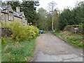 NY9463 : Driveway to Dukes House by Oliver Dixon