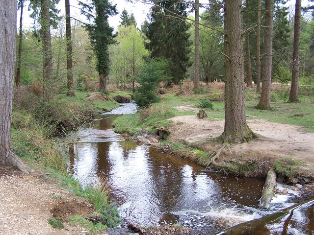 Bratley Water at Bolderwood