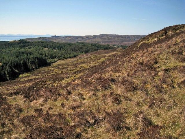 Slopes of Cruachan na Fèithe Seilich
