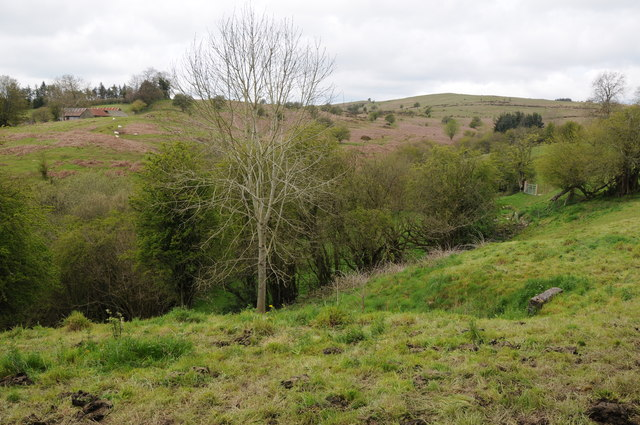 View to Disgwylfa Hill