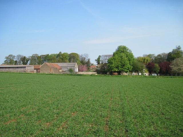 Field  to  Glebe  Farm