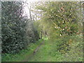 SE2305 : Bridleway south of Carr Lane by John Slater
