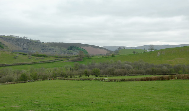 Pasture on a dull day near Glandulas, Powys