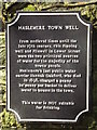 SU9032 : Haslemere Town Well Plaque by Colin Smith