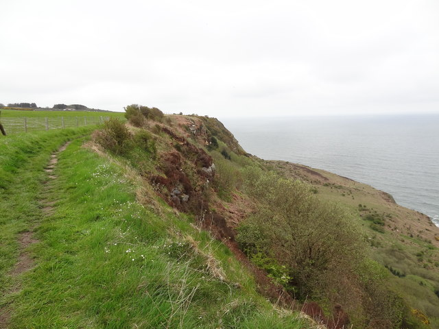 Cleveland Way near Bent Rigg