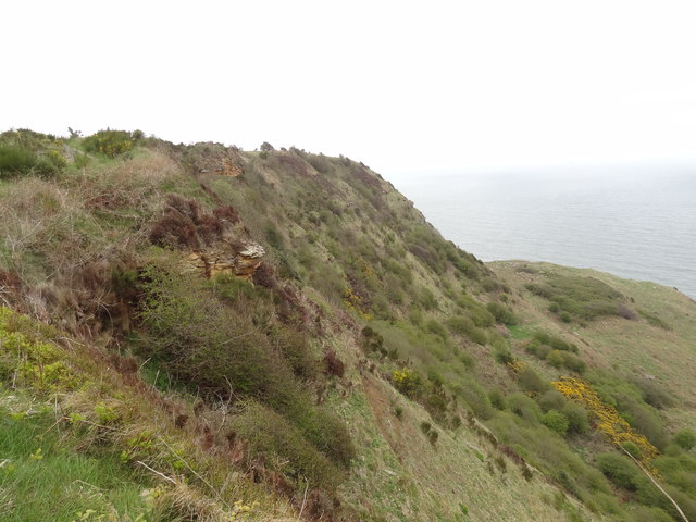 Cliff below Ravenscar