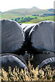 SJ9773 : Wrapped silage by David Lally