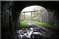 NT4541 : Bowshank Tunnel on the former Waverley Railway Line by Walter Baxter