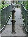 SN6801 : Disused turnstile posts on Lower Clydach River footbridge : Week 19