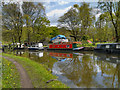 SD7731 : Canal Boats Moored on the Leeds and Liverpool Canal by David Dixon
