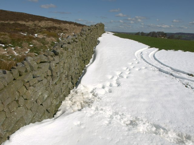 Snowdrift on Black Hill