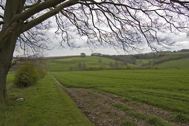 Near Little Givendale Farm