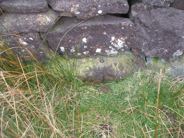 Rivet benchmark just off Boss Moor Lane