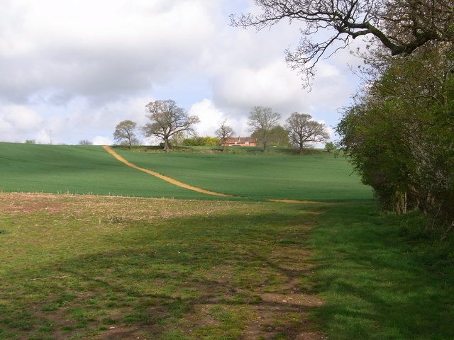 Cross-field towards Cookhill