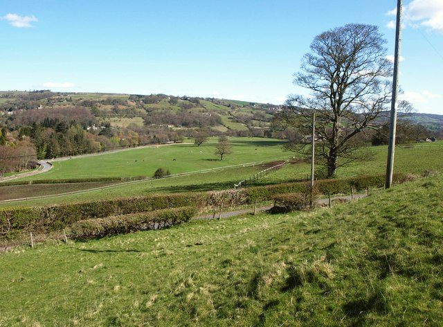 Towards the Nidd valley