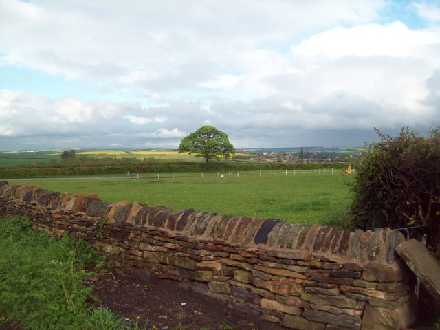 Rural Scene viewed from Whittington Road
