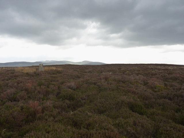 The summit area of Bryn Du