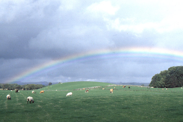 Rainbow over the Threave Estate
