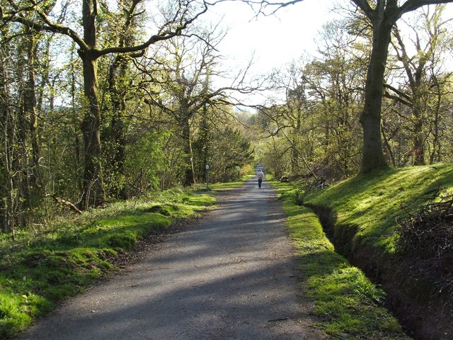 Avenue from Overtoun House