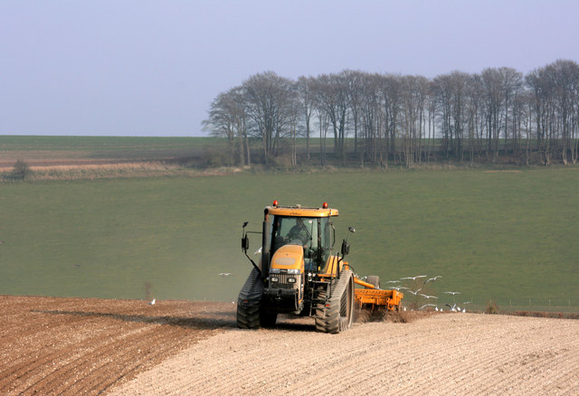 Yellow Tractor on Sparsholt Down