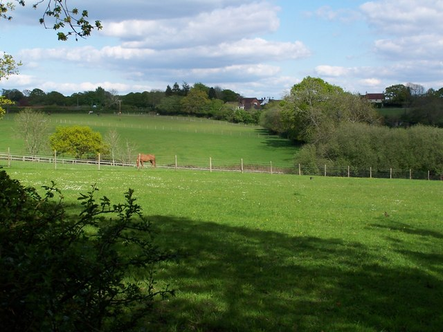Rolling fields near Fritham