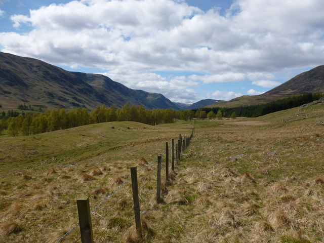 Field boundary, Glen Clova