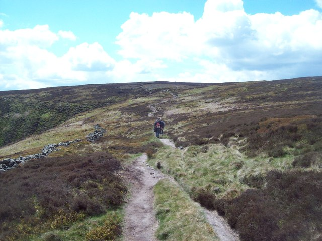 Path on Crookestone Out Moor