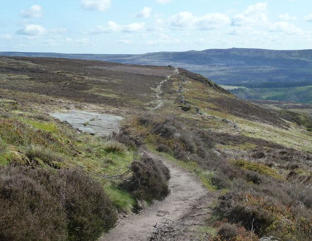Path across Crookstone Out Moor