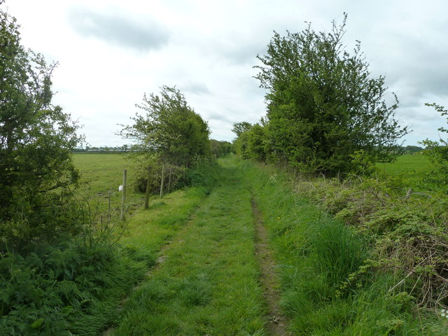 Footpath heading towards River Wyre