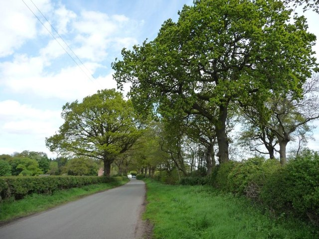 Sudlow Lane