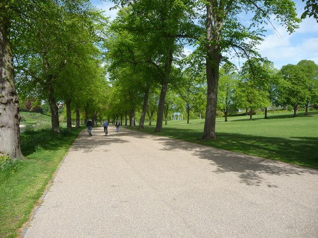 Dog Park Shrewsbury Ma