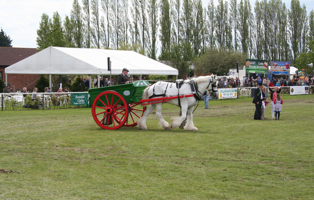 Horse and cart on show