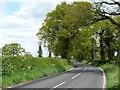 SJ7172 : Common Lane by Christine Johnstone