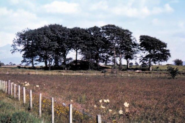 Moss of Achnacree - 1973