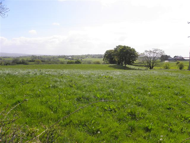 Corlea Townland