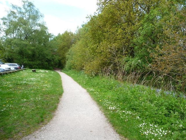 Footpath alongside the woodland, Shakerley Mere