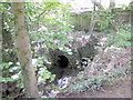 SO9983 : The Bourn Brook Emerges From Under Watery Lane by Roy Hughes
