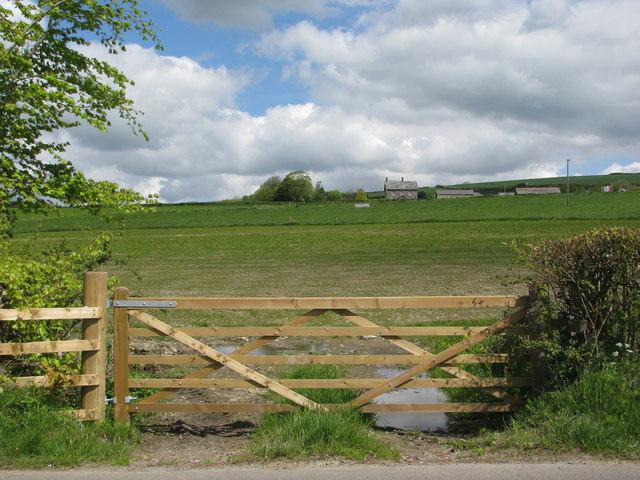 Roadside fields near North Aller