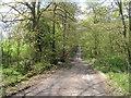 SE2406 : Carr Lane near Gunthwaite Dam by John Slater