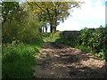SE2406 : Gunthwaite Lane by John Slater