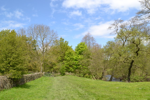 To Bank Wood and the River Derwent