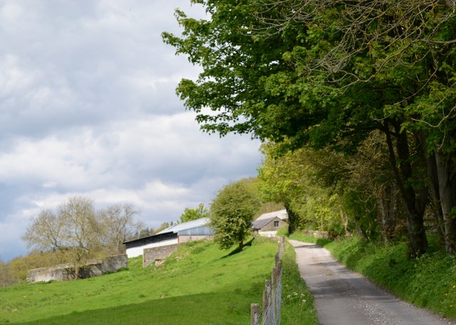 Lane to Haddon Park Farm