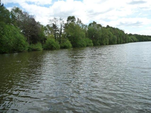 Eastern edge of Shakerley Mere