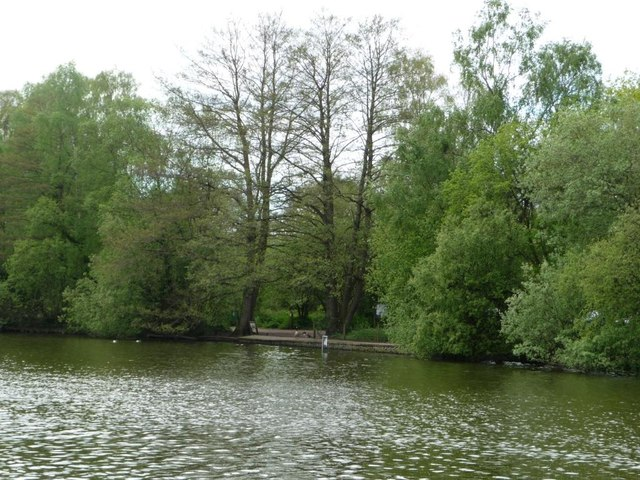 Lake shore, northern end of Shakerley Mere