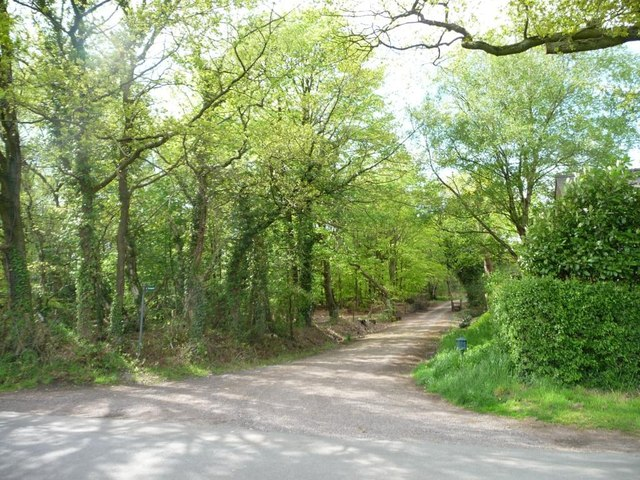 Private track and public footpath to Hales Pasture
