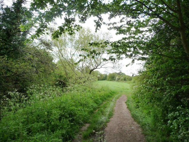 Footpath alongside Hatchford Brook