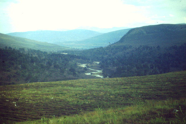 Glen Quoich
