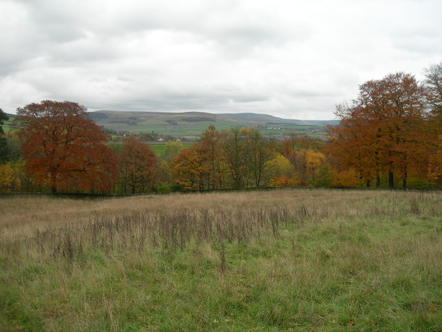 Hollingworth Nature Reserve